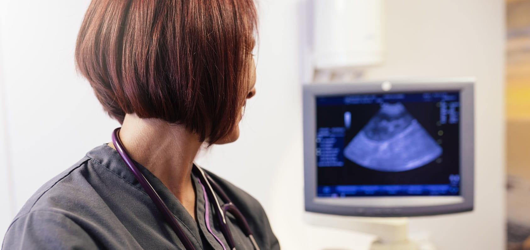 Eine Tierärztin schaut auf ein Ultraschall Bild
